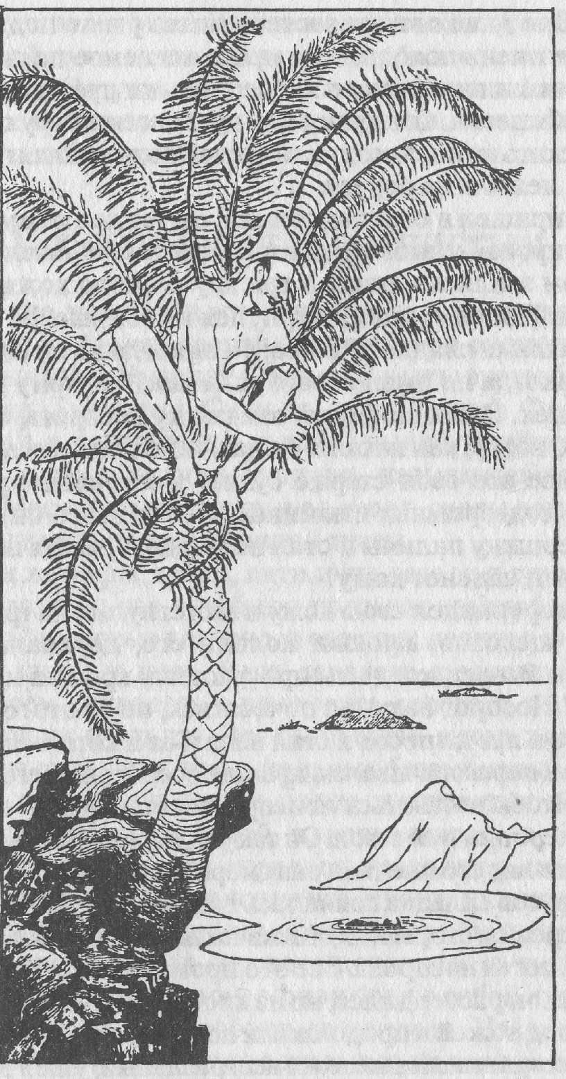 senmasa ru naked 3